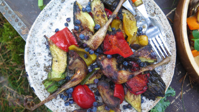 Grillede sneppelår og grøntsager serveret på fad og drysset med blåbær.