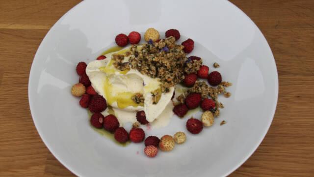 Hvid tallerken med vaniljeis med hampknas, hampolie, skovbær og honning