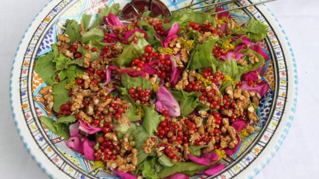 Fad med farverig salat af hybenroser, gul snerre og råsyltede ribs