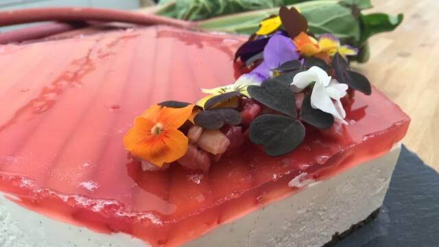 sommer cheesecake med rabarber og blomster