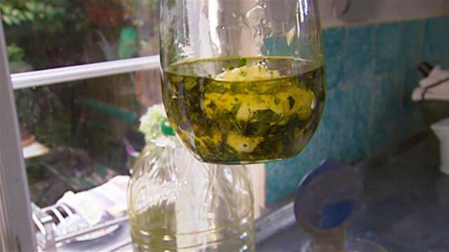 Labneh i olivenolie