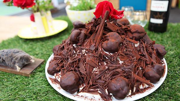 Mulvarpekage med masser af chokolade