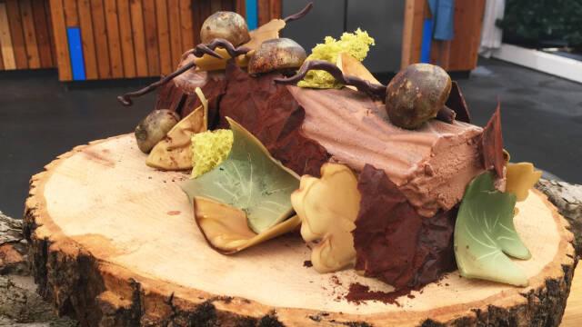 chokoladetræstamme