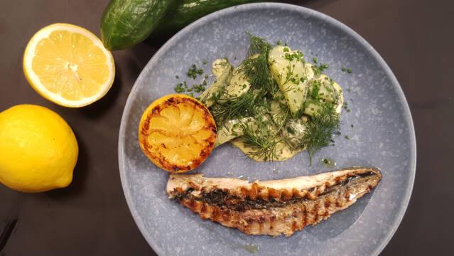 Makrel med stuvede agurker