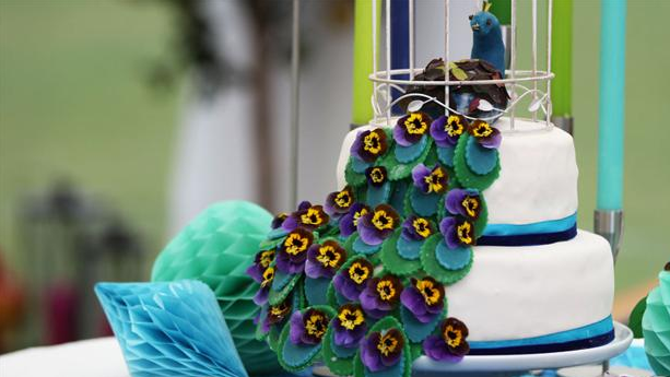 Smuk påfuglekage med overtræk af fondant og blåbærmousse