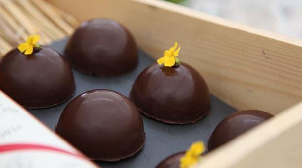 Passionsdrømme af skinnende mørk chokolade