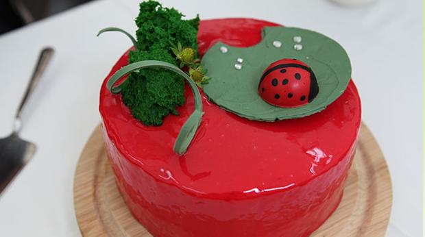 Smuk kage med rød glaze og mariehøne på toppen