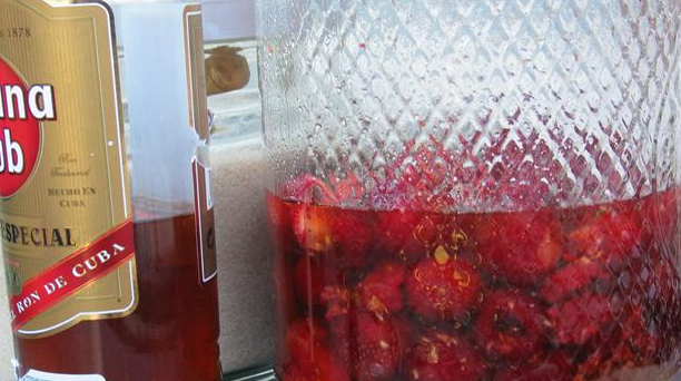 Billede af klassisk tysk romtopf med sommerens modne bær
