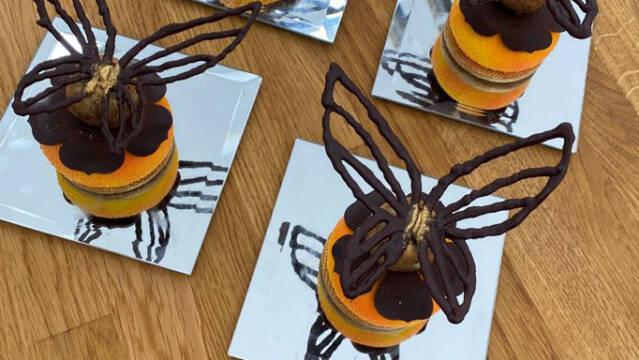 Kage med chokoladesommerfugl på toppen