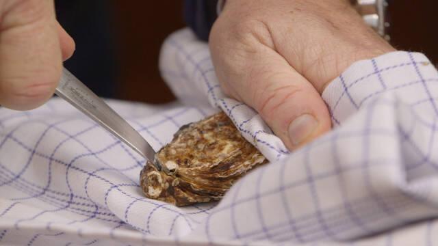Billede af frisk østers der åbnes
