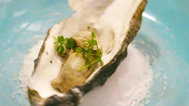 østers i skal med karse