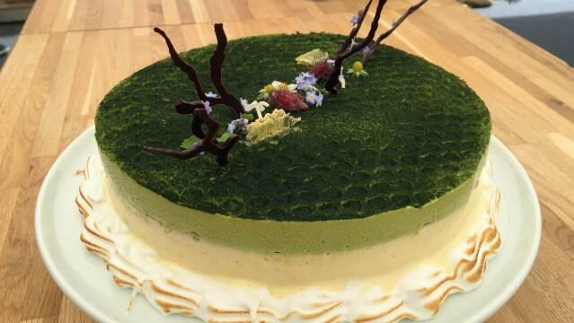 Billede af smuk kage inspireret af en havevandring