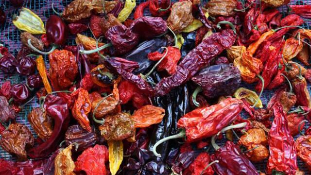 Forskellige tørrede chili