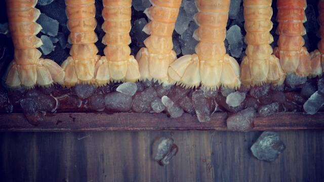 Timm Vladimirs hummerbisque lavet på jomfruhummere
