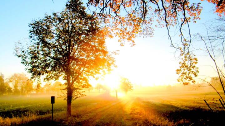Se billederne: Læserne indfangede efteråret fra dets smukkeste side