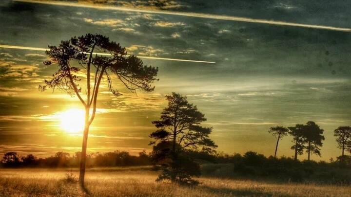 Onsdag giver en grå start med solrig afslutning og op til 23 grader