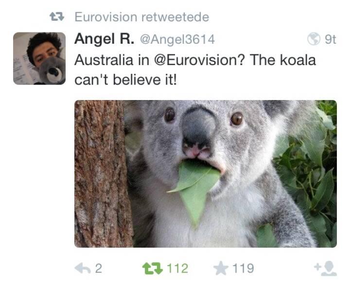 Australien koala Eurovision