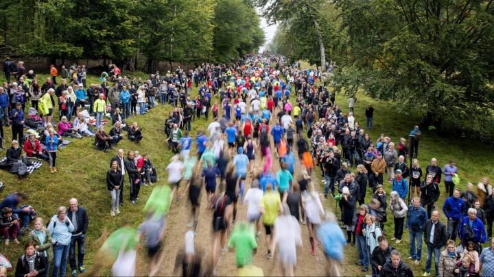 Danskerne er europamestre i motion