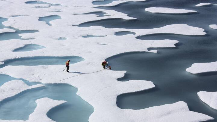 Plusgrader på Nordpolen: Temperaturkurven er bekymrende