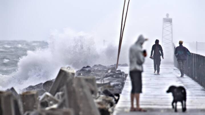 Kraftig blæst er på retur: Stormen Johanne blev aldrig en rigtig storm
