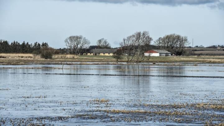 Ekspert advarer: Regeringen vil have udsat EU's vandmiljø-deadline