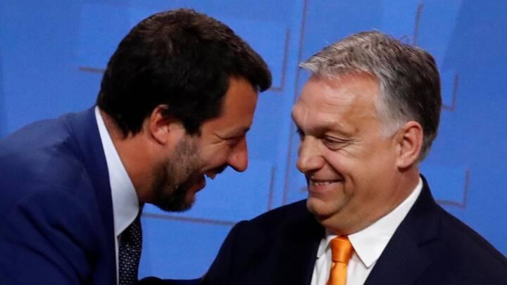 Ungarn suspenderer omstridt retsreform og afviser Salvini