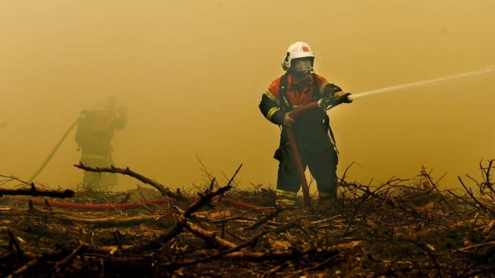 Tjek brandfaren der hvor du bor på ny hjemmeside