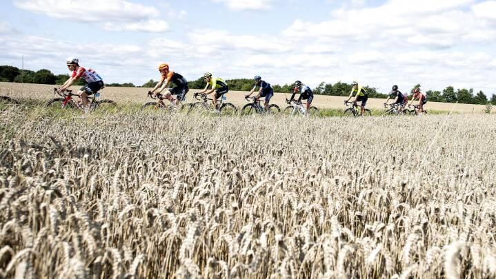 Danmarks største cykelløb rykker en kategori op, og det giver sommerfugle i maven