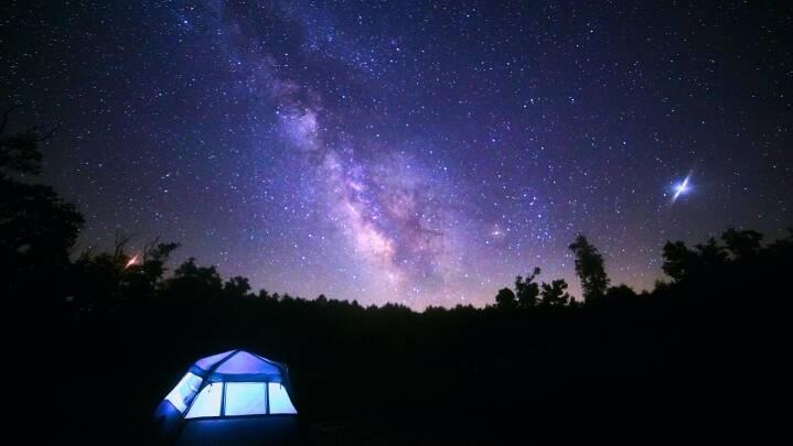 Stjerneskud, ugle-hyl og dyr på jagt: Her er din guide til natur-oplevelser om natten
