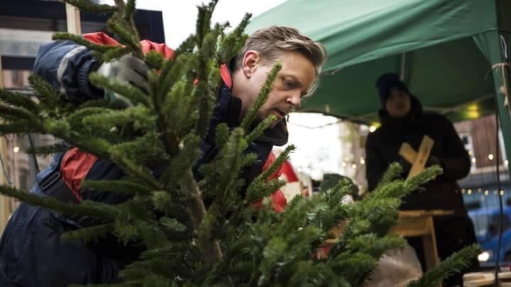 Små juletræer og andebryst hitter: Vi fejrer julen på en ny måde i år