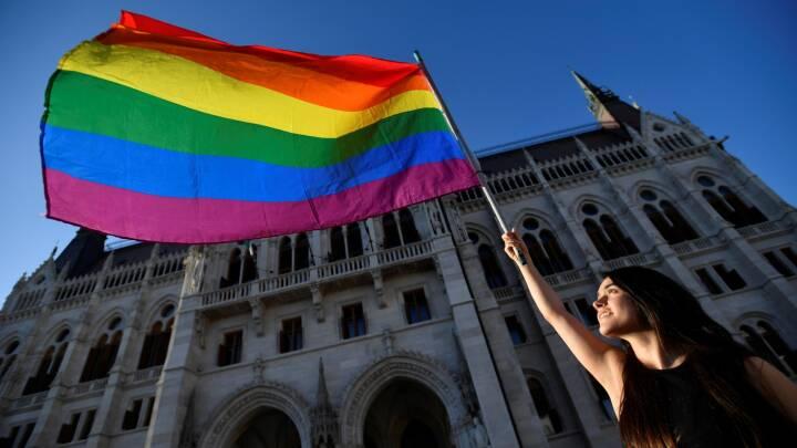 'Den er en skændsel': EU-chef langer ud efter Ungarns omstridte LGBT+-lov