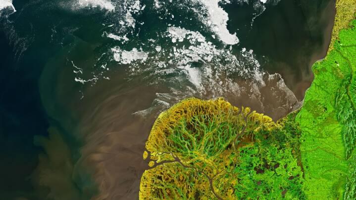 Nu kan du hjælpe Nasa med at finde deres flotteste satellitfoto