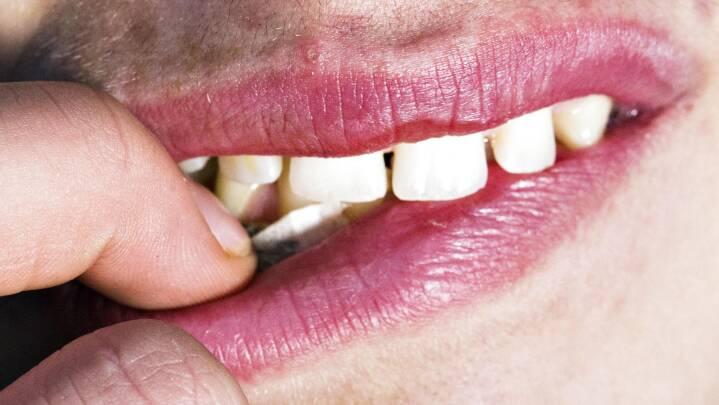 Test din viden: Er der mere nikotin i nikotinposer end i cigaretter?