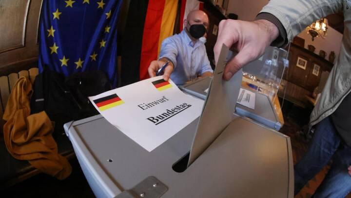 Tre tyske vælgere med bånd til Danmark fortæller, hvad de drømmer om