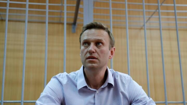 Navalnyj vinder anset EU-menneskerettighedspris