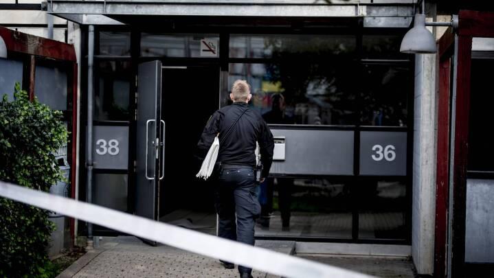 Nu klapper Europols registre i for dansk politi