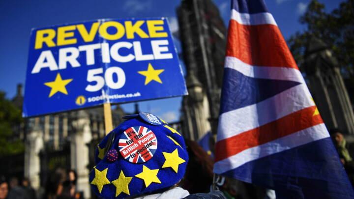 ORDBOG: Søg på det brexit-ord, du ikke forstår