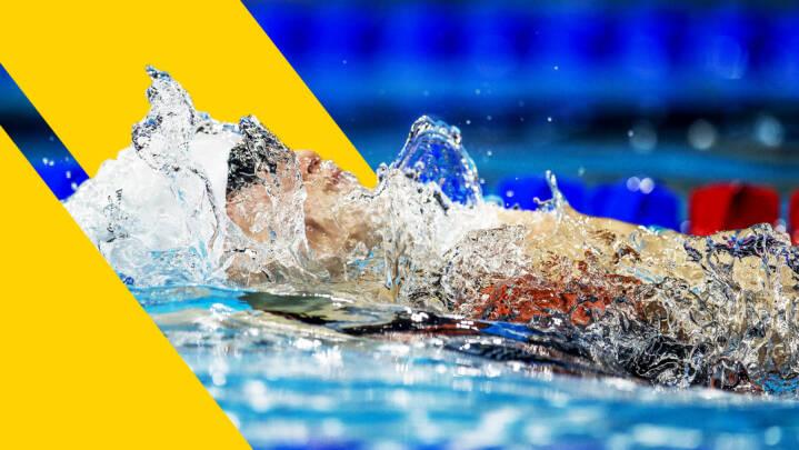 Ny svømmeformand har bedt eksdirektør om at forlade toppost: 'Ingen tvivl om, at det er bedst for dansk svømning'