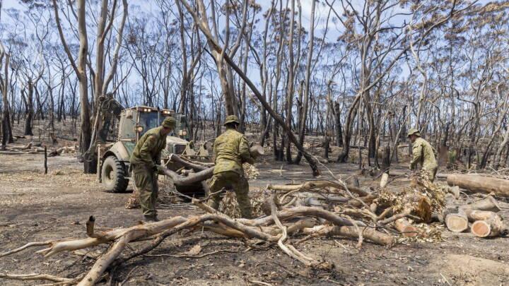 Alle brande i australsk delstat er under kontrol