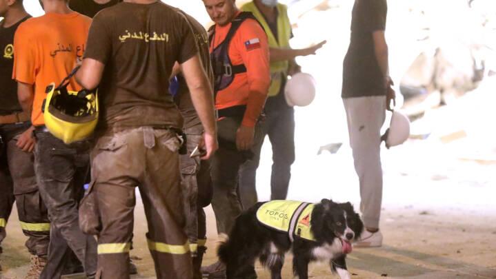 Håbet svinder for at finde liv under murbrokker i Beirut