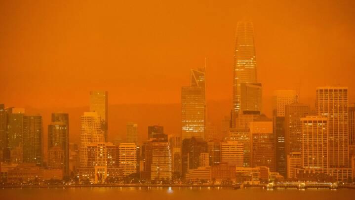 Skovbrande indhyller San Francisco i orange tåge