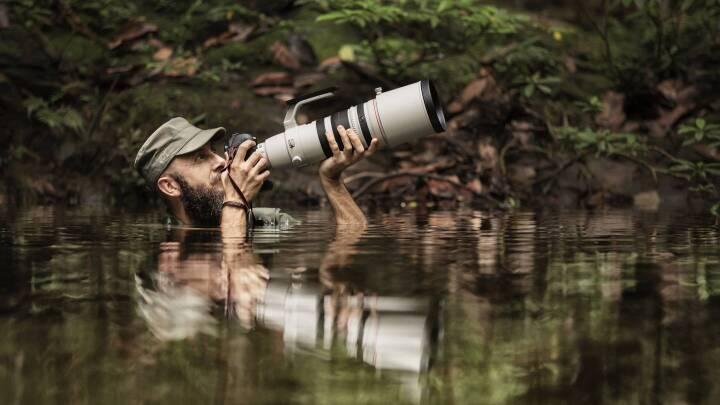Danske fotografer mistede næsten livet i jagten på sjældne dyr: Se 14 af deres bedste billeder