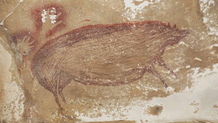 Overraskende fund: Verdens ældste dyremaleri dukker op i grotte