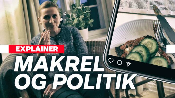 Makrelmadder og håndbold-jubel: Er politikernes brug af sociale medier et problem?