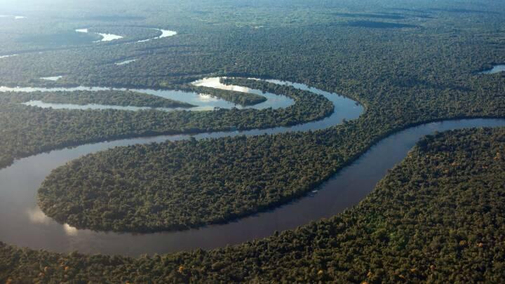 Beregninger chokerer forskere: Amazonas udleder nu mere CO2, end den optager