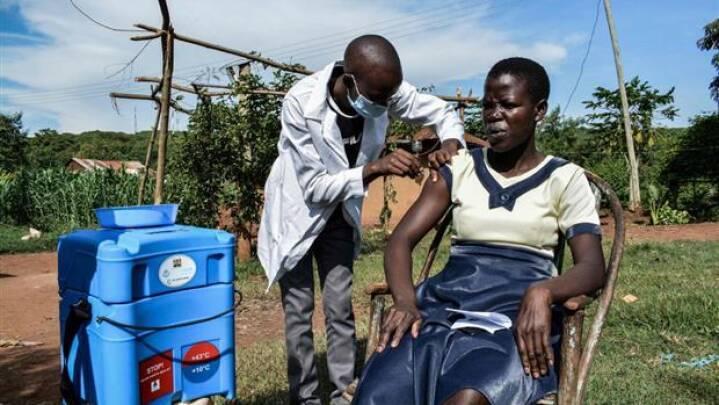 WHO: Fattige lande er tvunget til at stoppe vaccinering