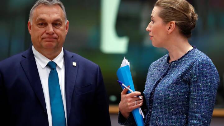 Frederiksen skruer bissen på over for Orbans LGBT-kurs: Fuldstændigt uacceptabelt