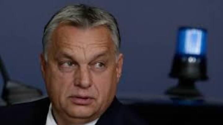 Viktor Orbán vil udskrive folkeafstemning efter EU-strid om udskældt lov