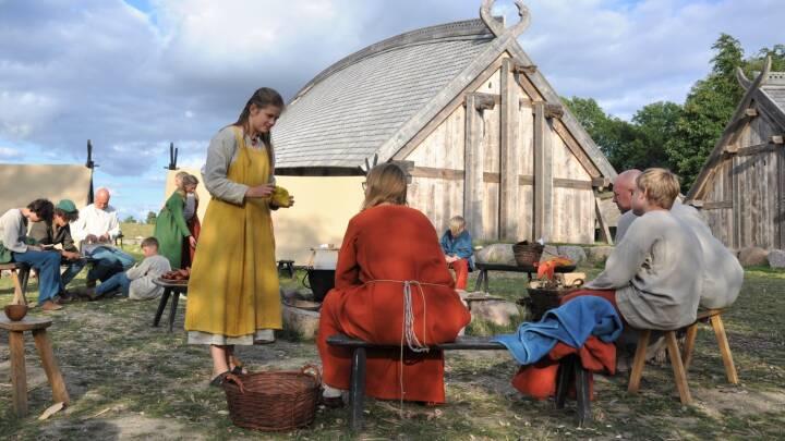 Vulkanudbrud og et pludseligt barskt klima kan have givet vikingerne vind i sejlene