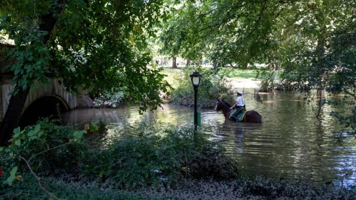 SE BILLEDERNE Voldsom regn har oversvømmet New Yorks parker og veje